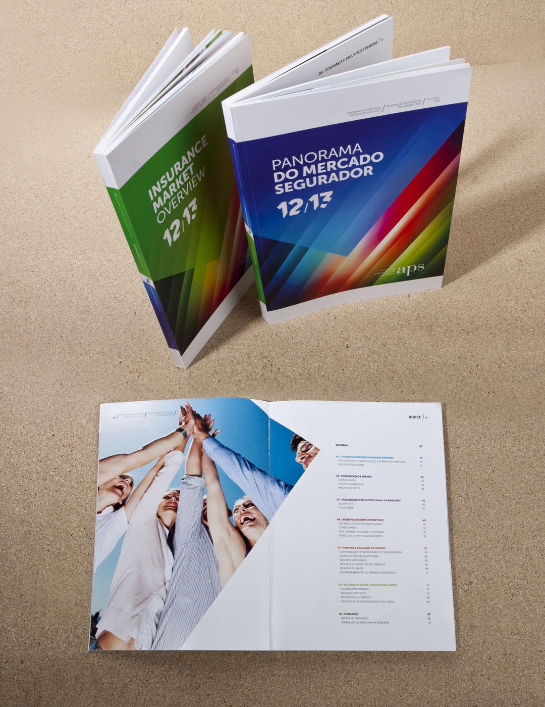 PublicaçãoPanoramaAPS01
